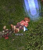 melofa2.jpg